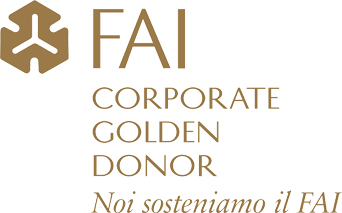 Novavision – Corporate Golden Donor FAI